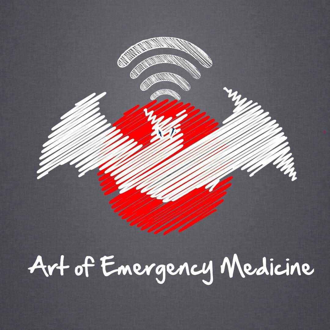 Art of Emergency Medicine show art