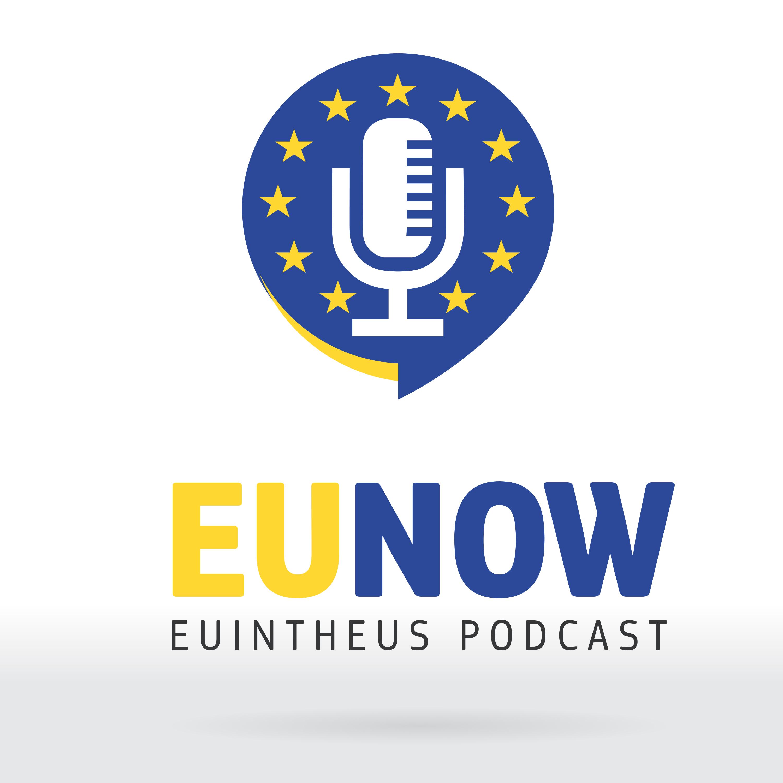 EU Now show art