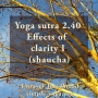 Artwork for Yoga Sutra 2.40 Effects of Clarity I (shaucha)