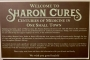 Artwork for 66. Sharon Cures: One Small Town of Medical Marvels