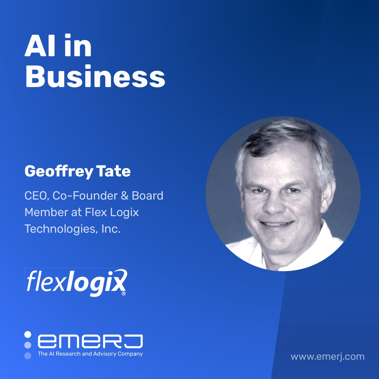 Use Cases of AI Inference at the Edge - with Geoffrey Tate of Flex Logix show art
