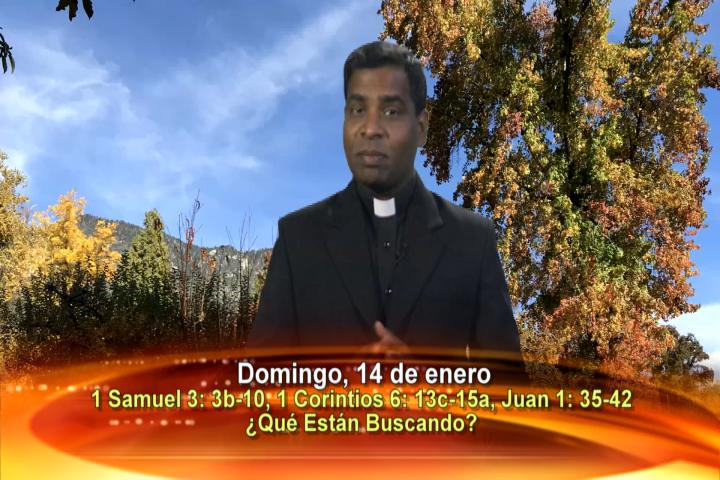 Artwork for Dios te Habla con Fr. Deeber Yonas, SVD; Tema el hoy: ¿Qué están buscando?