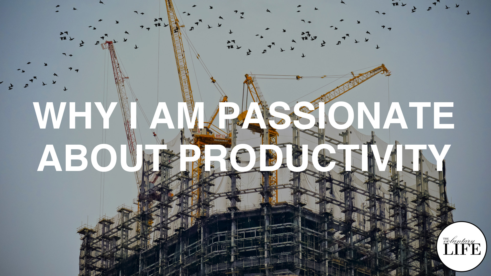347 Why I Am Passionate About Productivity