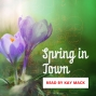 Artwork for Spring in Town
