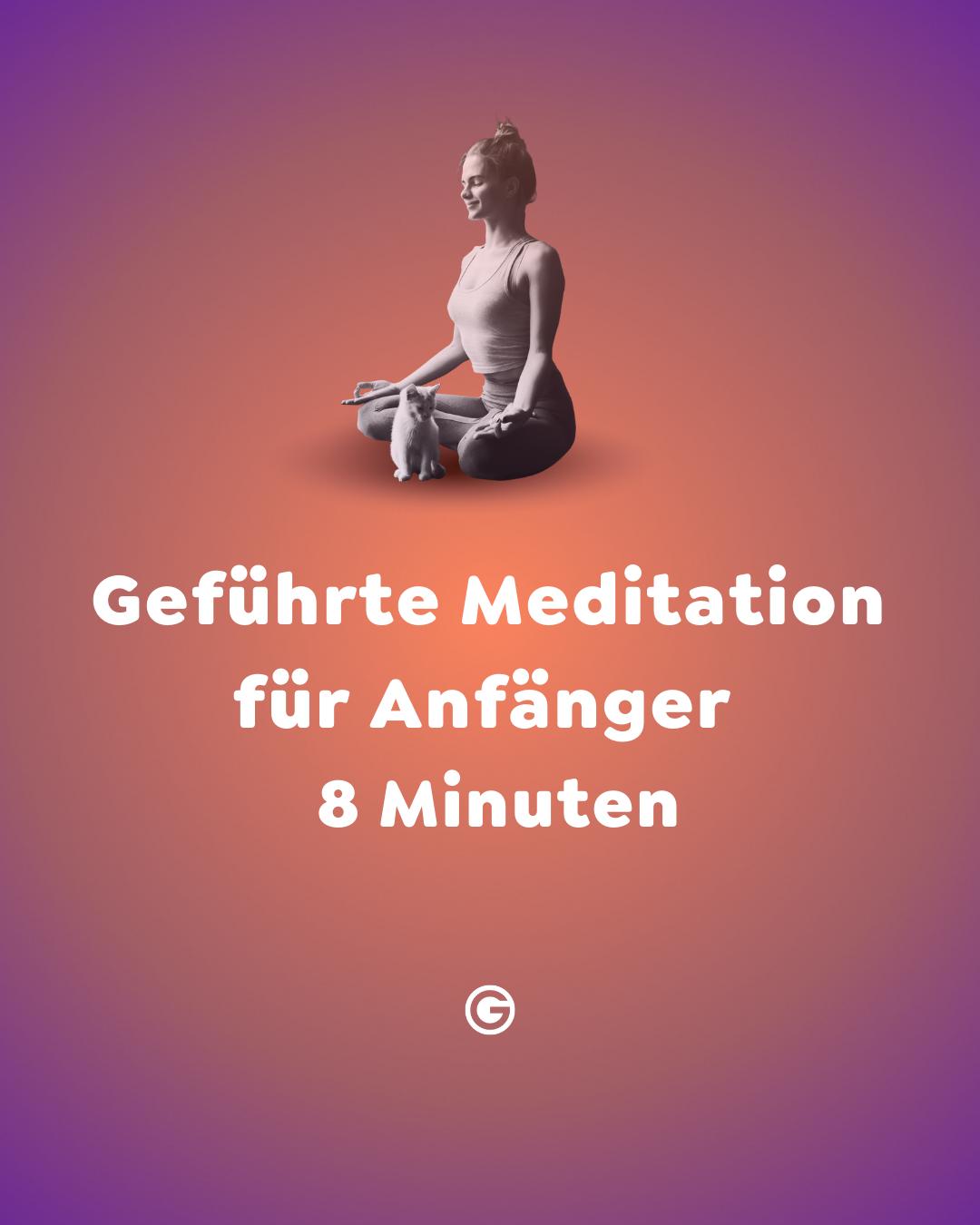 #812 Geführte Meditation Anfänger|8 Minuten