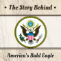 Artwork for America's Bald Eagle | Lies from Sesame Street and The West Wing (TSB075)
