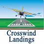 Artwork for 95 Crosswind Landing Tips for Private Pilots and Student Pilots + GA News