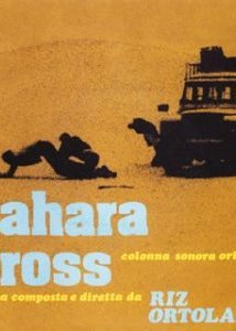 Episode #221: Sahara Cross