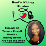 Artwork for Episode 40: Tamera Powell Needs a Kidney Donor. Are you the one?