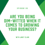 Artwork for EP20: Are You Being Dim-Witted When it Comes to Growing Your Business?