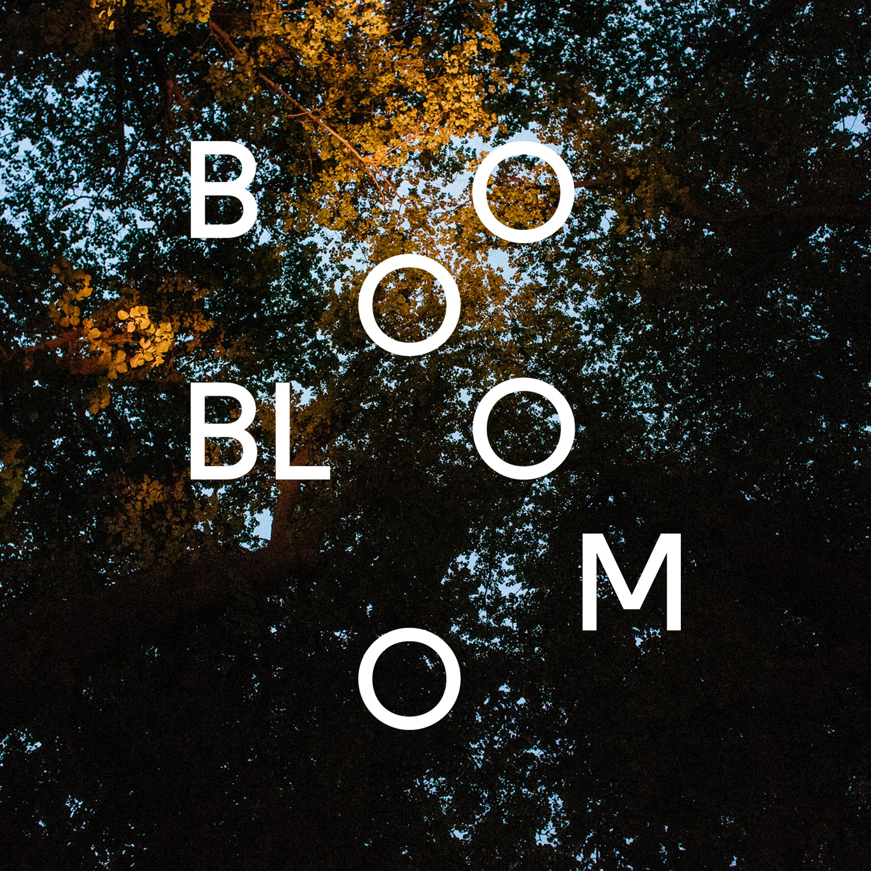 Bloom show art