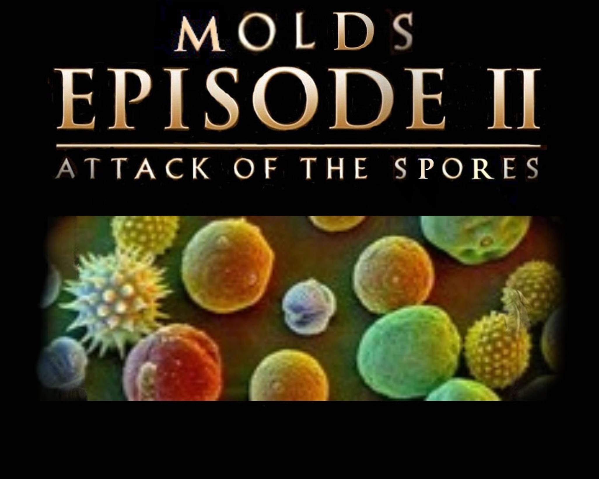 29-Attack Of The Spores