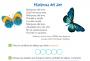Artwork for SM030 Mariposa del aire 11 Junio 2019