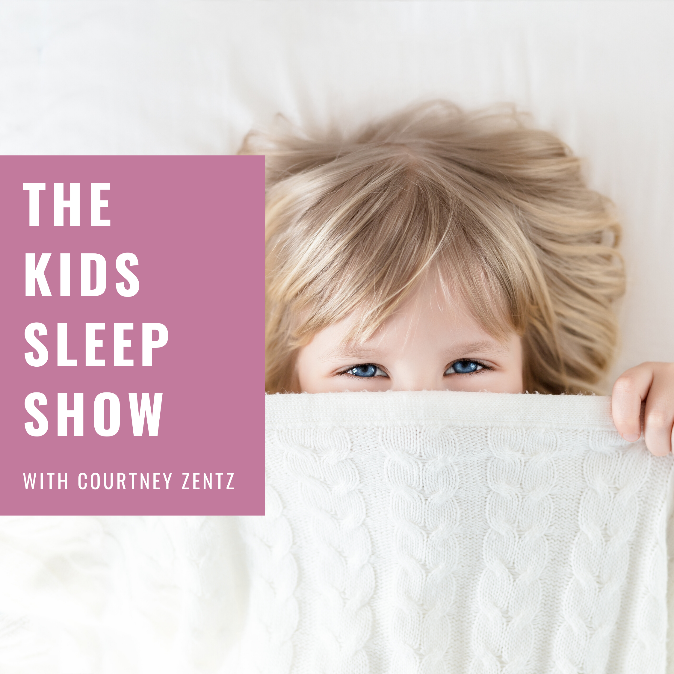 The Kids Sleep Show show art