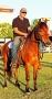 Artwork for 362: Steve Brinkworth - Horsemanship Essentials for Horses and Horse Owners