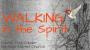 Artwork for Walking In The Spirit