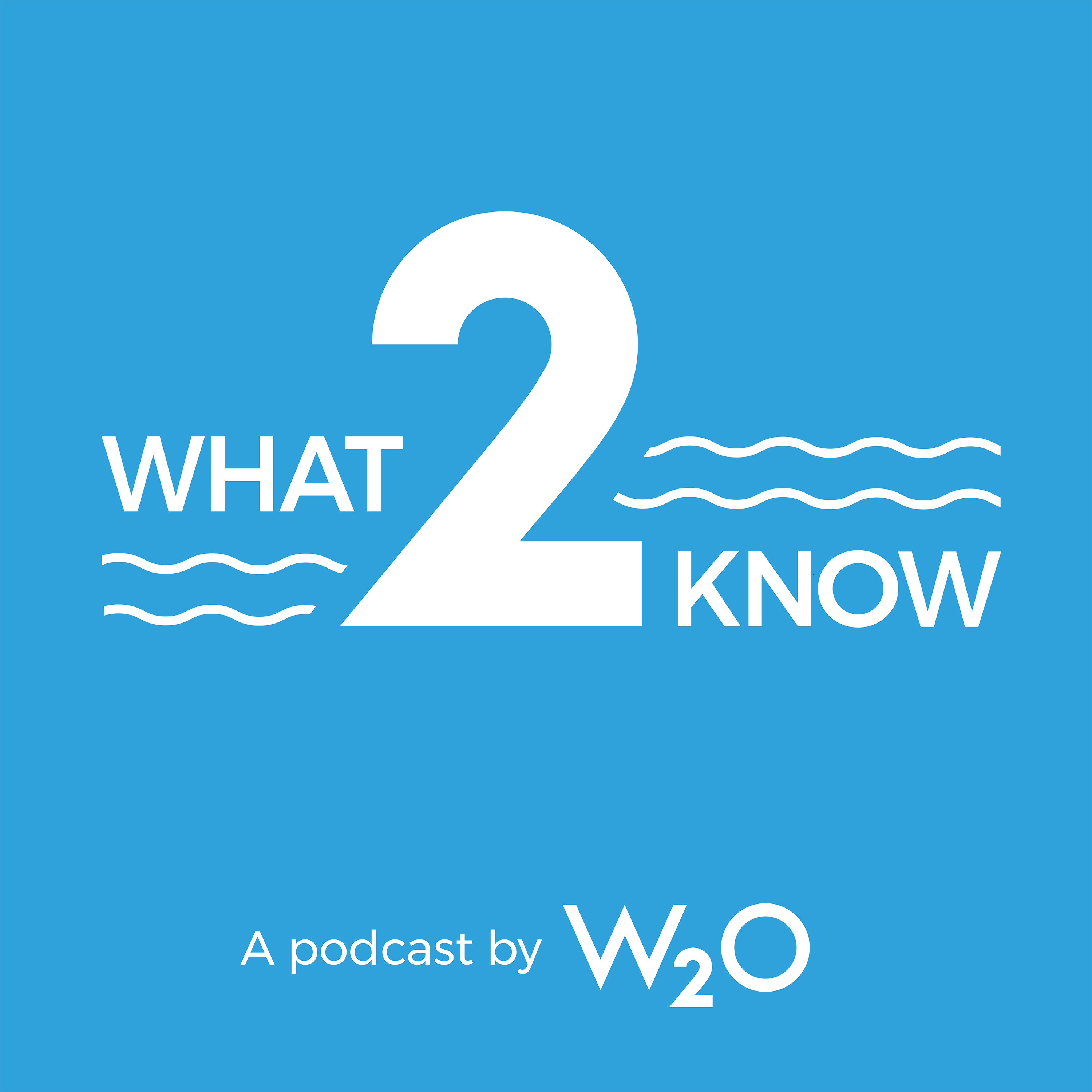 What2Know - a Marketing and Communications Podcast show art