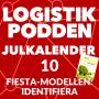 Artwork for Lucka 10 - FIESTA-modellen: Identifiera