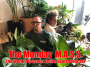 Artwork for The Monday M.A.S.S. With Chris Coté and Todd Richards, December 28, 2020 Todd's Birthday Show!