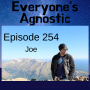 Artwork for Episode 254 - Joe
