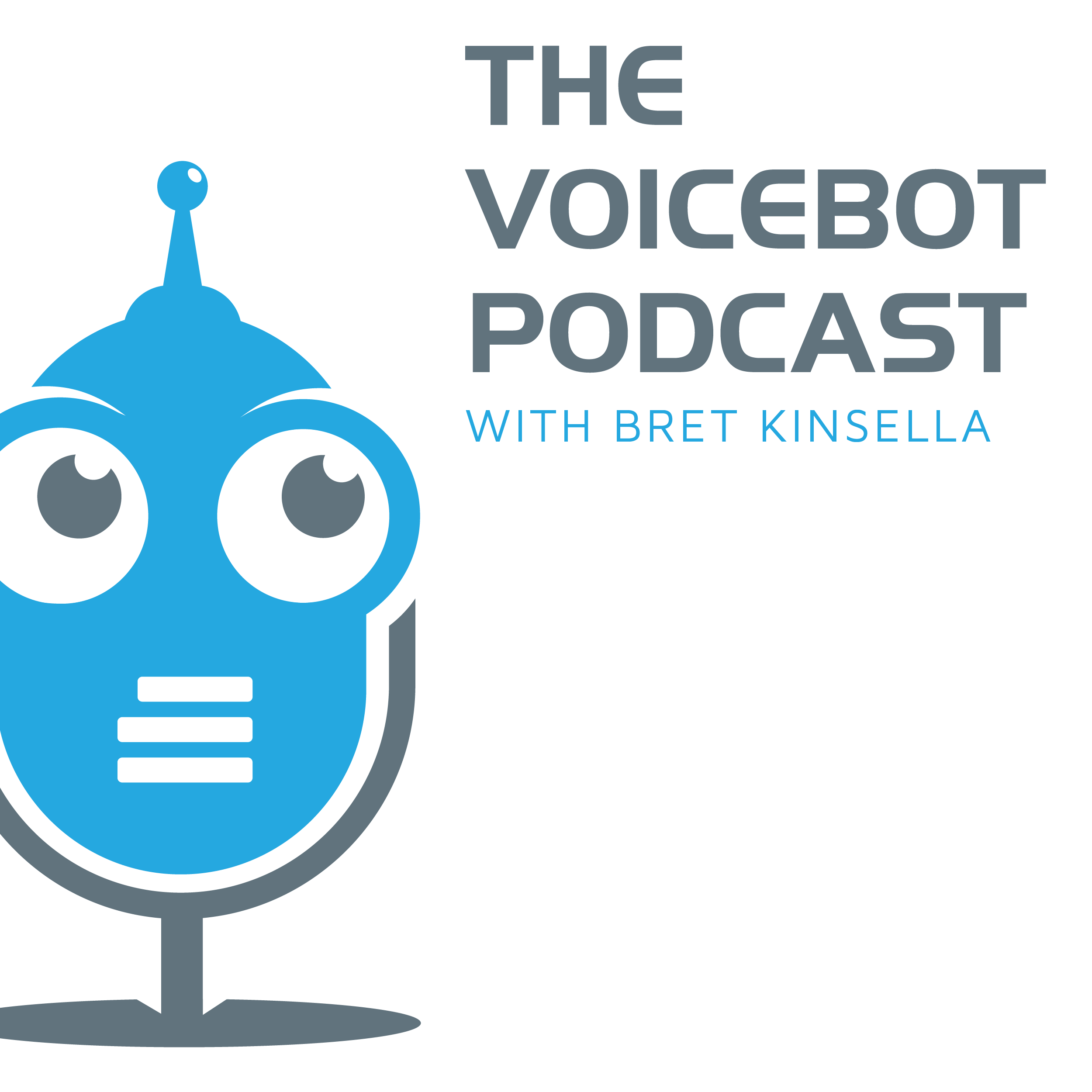 The Voicebot Podcast show art