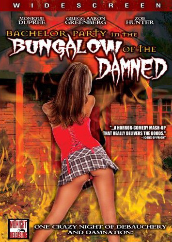 SRC Stall #10: Bachelor Party In The Bungalow Of The Damned (2008)