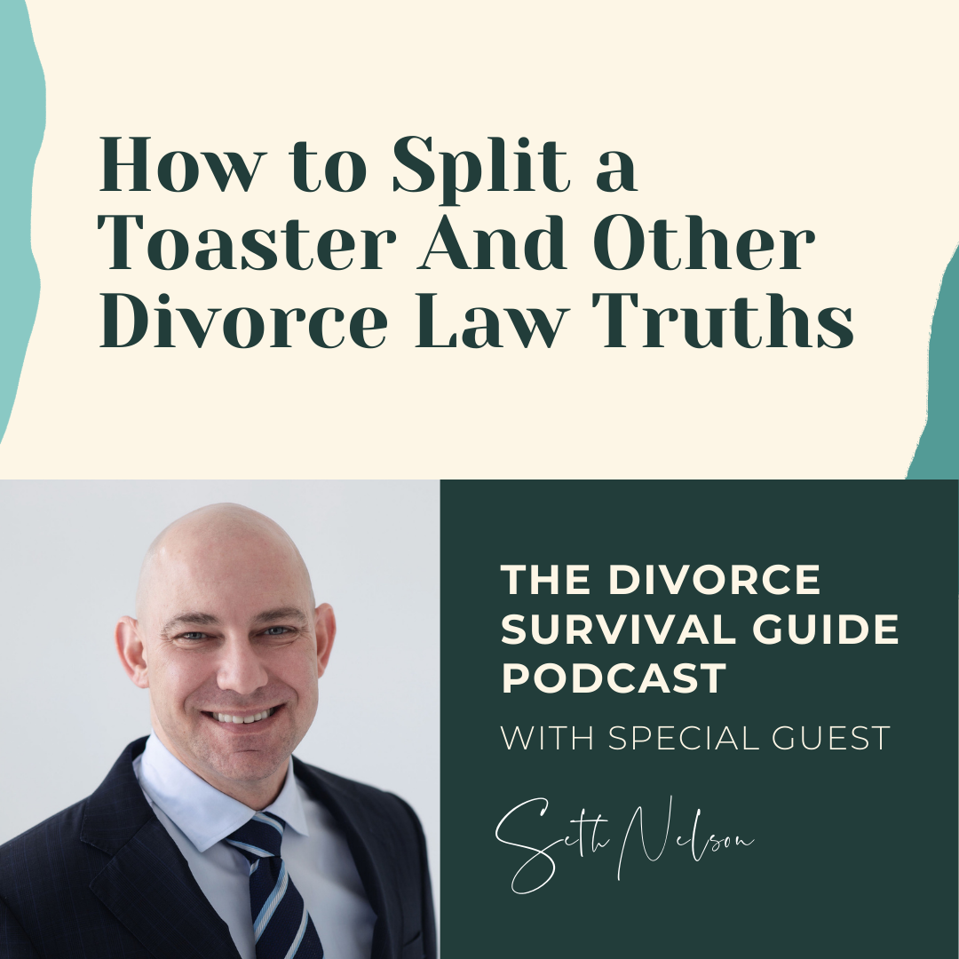 The Divorce Survival Guide Podcast - How to Split a Toaster And Other Divorce Law Truths with Seth Nelson