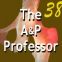 Artwork for Mid-Semester Check-Ins Keep Your A&P Course on Track | Episode 38