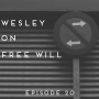 Artwork for Episode 20: Wesley on Free Will