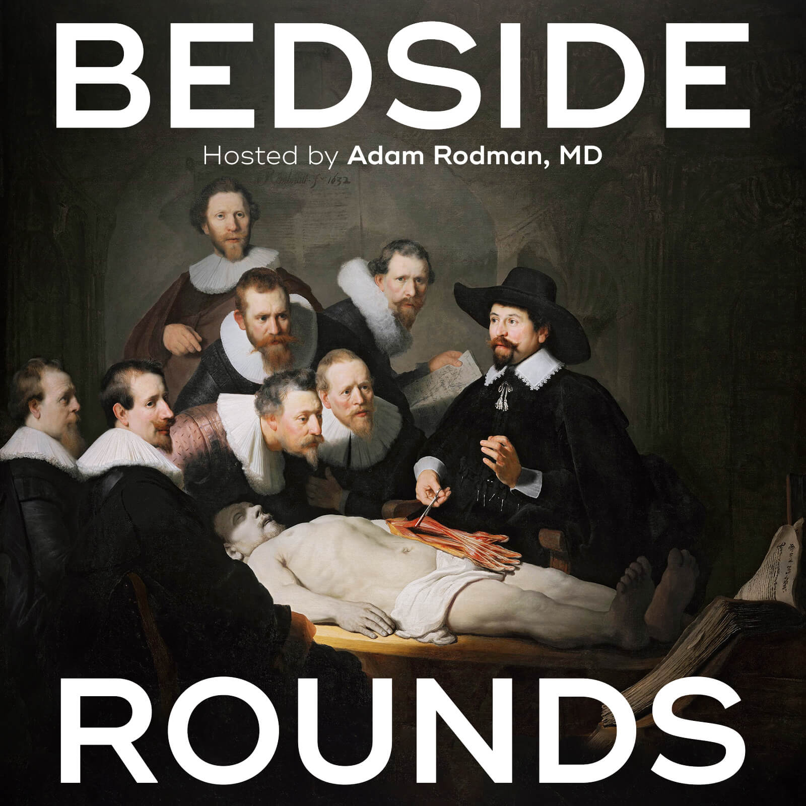 Bedside Rounds show art