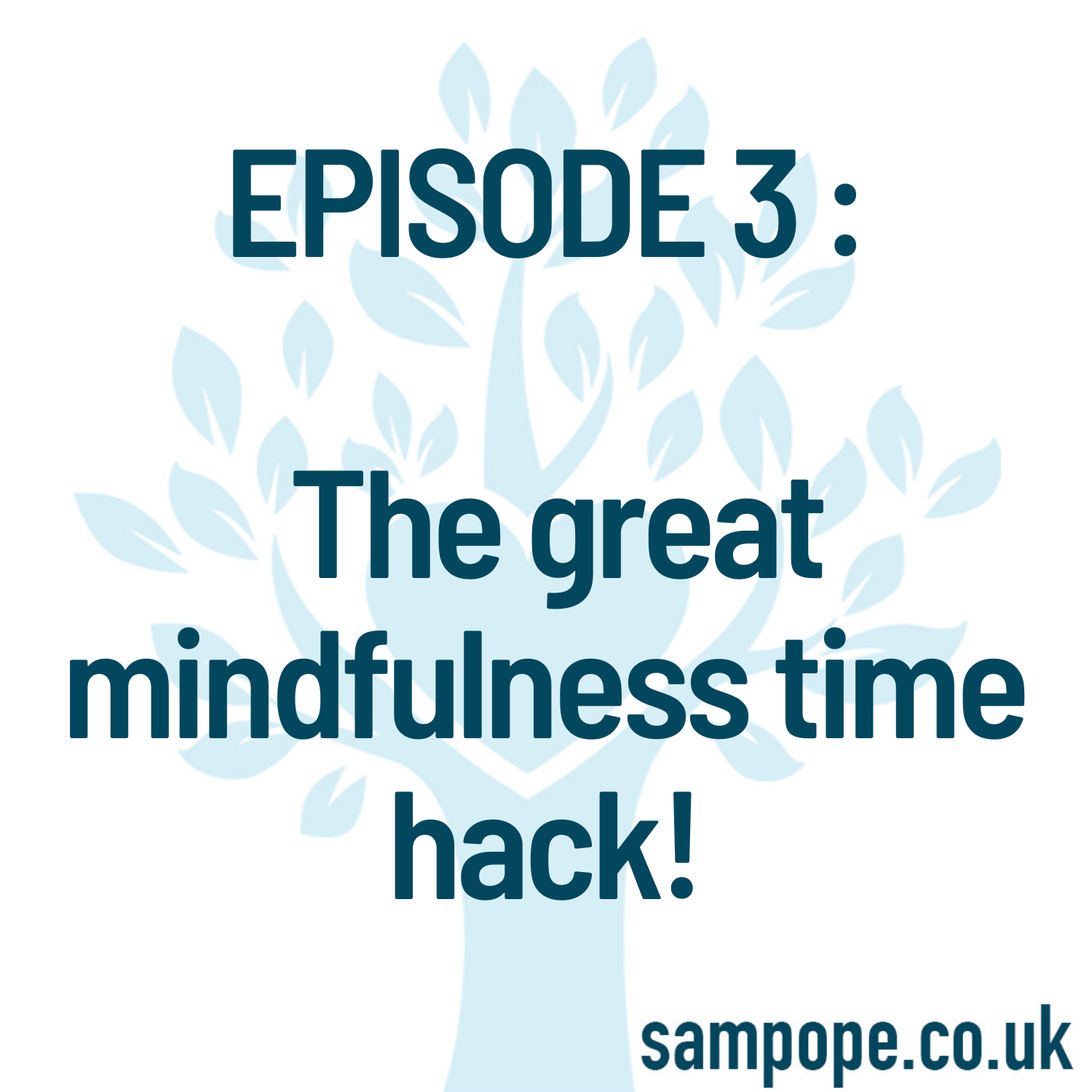 EPISODE 3 : Take time to make time - the great mindfulness time hack! show art