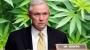 Artwork for Marijuana Could Be Trump's Vice...