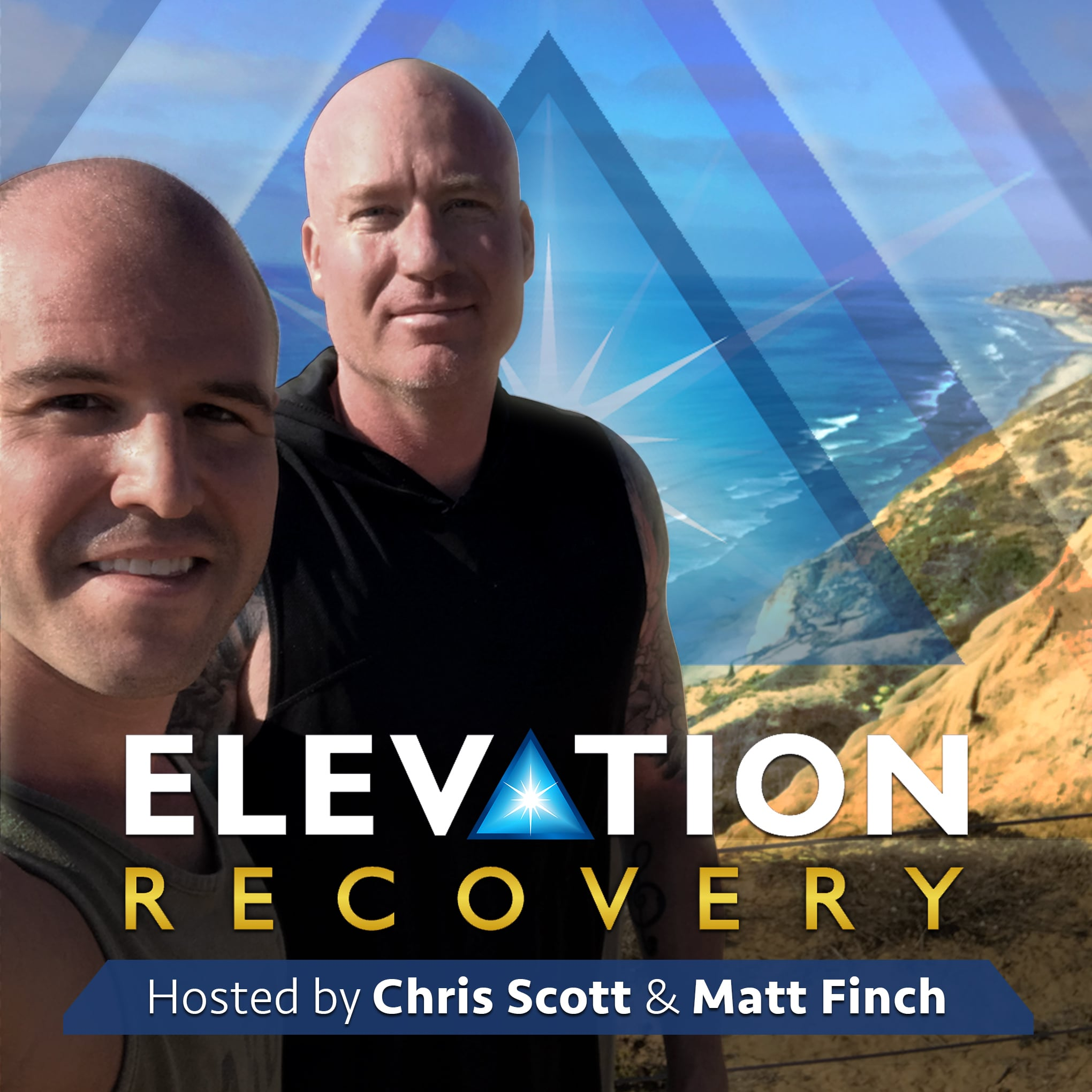 Elevation Recovery: Addiction Recovery Strategies for Opioid, Alcohol, Pills, & Other Substance Addictions show art