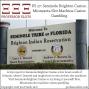 Artwork for PS 27:Seminole Brighton Casino, Minnesota Slots 2017
