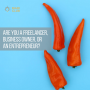 Artwork for Are You a Freelancer, Business Owner, or an Entrepreneur?