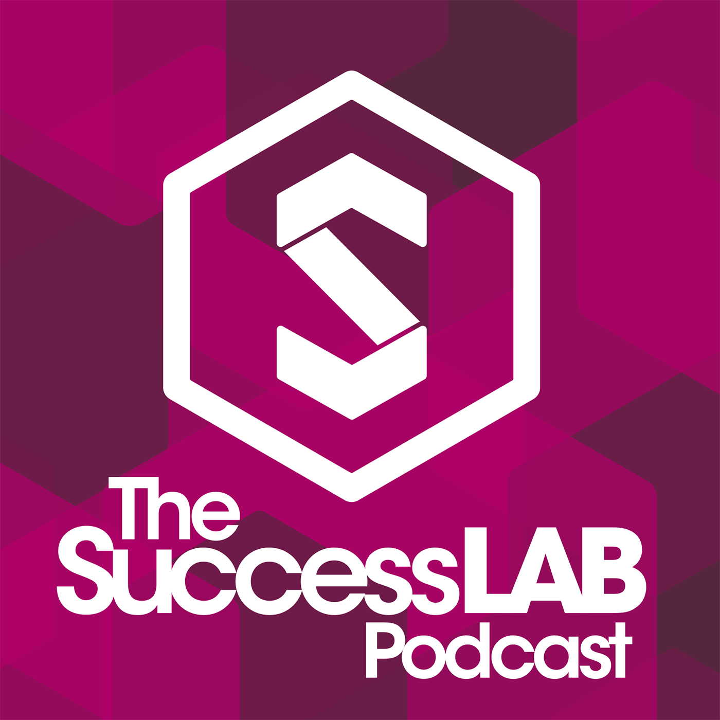 Artwork for SuccessLab Podcast 14: Conquer Fears to Achieve Success with Paul Blais