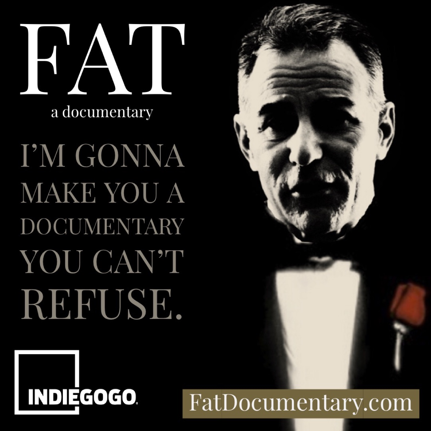 Artwork for [Video] Support for FAT: A Documentary