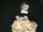 Artwork for YST Episode 103 Norfolk Horn fleece review