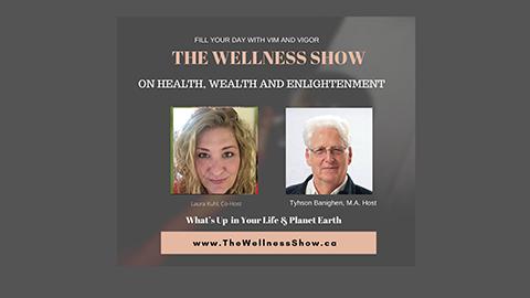 The Wellness Show show art