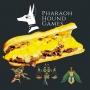 Artwork for Phood with Pharaoh Hound Games - STR +34