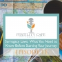 Artwork for Ep. 11   Surrogacy Laws: What You Need to Know Before Starting Your Journey