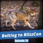 Artwork for FC 024: Bolting to BlizzCon