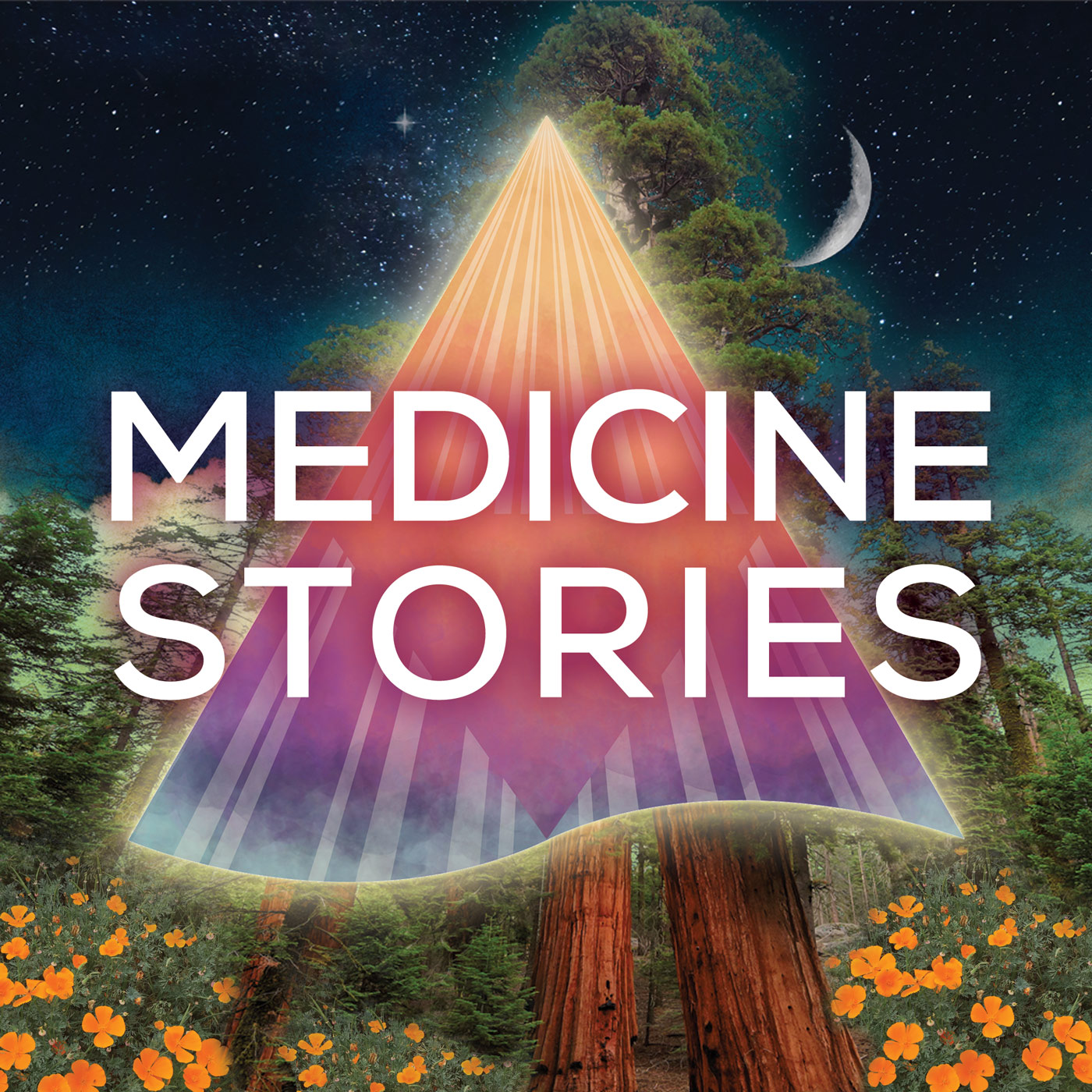 Medicine Stories show art