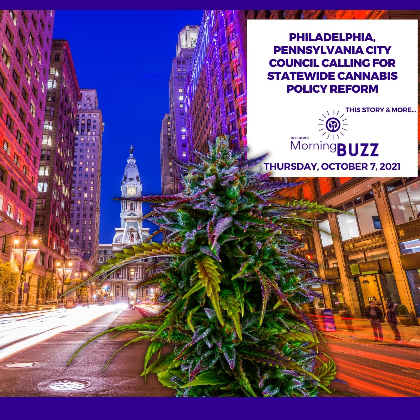 Philadelphia, Pennsylvania City Council Calling For Statewide Cannabis Policy Reform show art