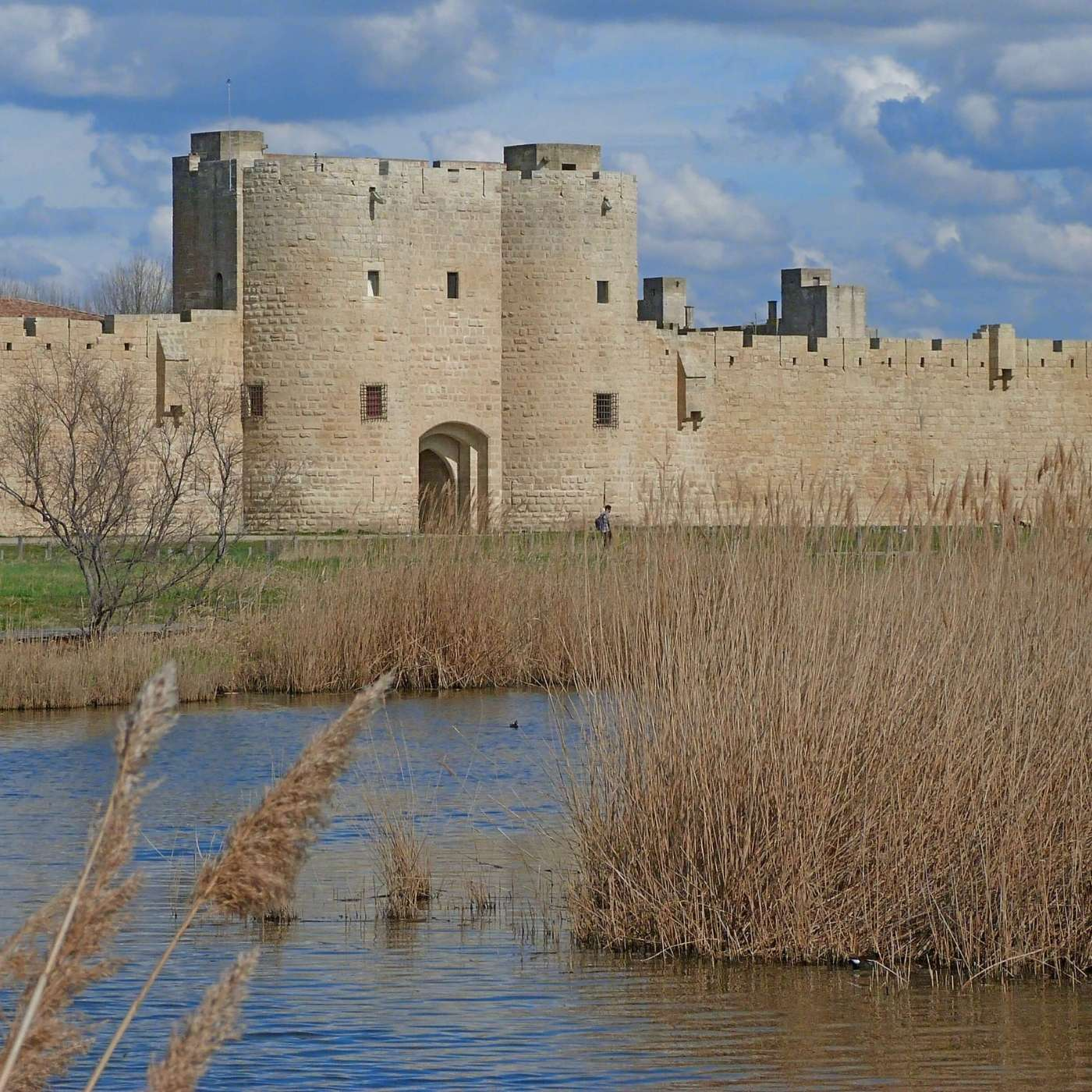 Aigues-Morte the Fortified City, Episode 313
