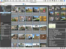 Batch rename your files using Adobe Bridge CS3