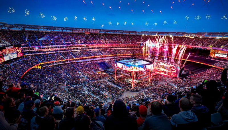 Resultado de imagem para WWE e crowd