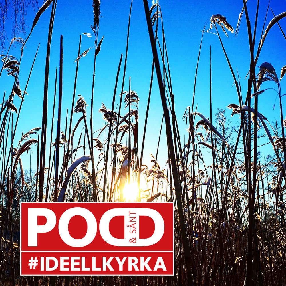 Podd & sånt - #ideellkyrka show art