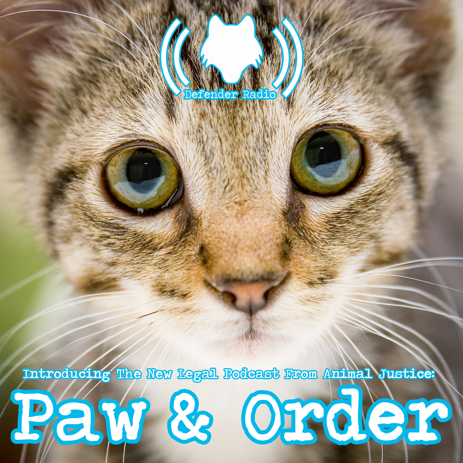 Artwork for Introducing The New Legal Podcast From Animal Justice: Paw & Order (508)