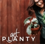 Artwork for 9. Fiddle Leaf Fig Expert, Claire Akin on the Get Planty Podcast